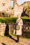 Tut埋葬城堡,字符 免版税库存图片