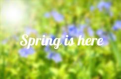 tutaj wiosna Zdjęcie Stock