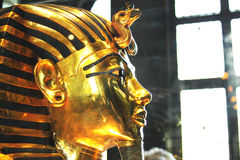 Tutankhamun在埃及博物馆 免版税库存图片