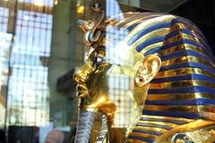 Tutankhamun в египетском музее стоковая фотография