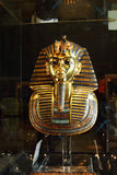 Tutankhamun in the egyptian museum in cairo in egypt in africa  Royalty Free Stock Images