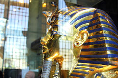 Tutankhamun in the egyptian museum in cairo in egypt in africa. The original tutankhamun mask in the ancient egyptian cairo museum from inside in egypt on stock photography