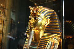 Tutankhamun in the egyptian  in cairo in egypt in africa  Stock Image