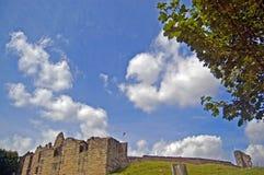 Tutbury Schloss und Baum Stockbild
