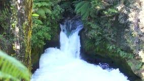 Tutea Falls. Kaituna River stock footage