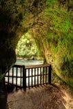 Tutea` s hol, Okere-Dalingen, Nieuw Zeeland stock afbeeldingen