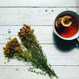 Tutsan and cup of tea with lemon on a white background Stock Image