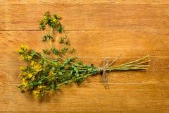 Tutsan. Dried herbs. Herbal medicine, phytotherapy medicinal her Stock Photos