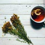 tutsan e tazza di tè con il limone su un fondo bianco Immagine Stock