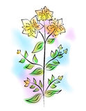 The tutsan flower Stock Photos