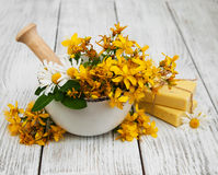 Tutsan flowers  and mortar with soap Stock Photography