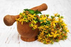 Tutsan flowers  and mortar Royalty Free Stock Photography