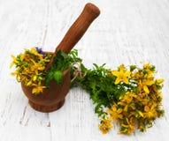 Tutsan flowers  and mortar Stock Photo