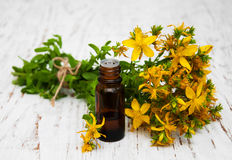 Tutsan flowers  and natural oil Royalty Free Stock Images