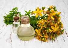 Tutsan flowers  and natural oil Royalty Free Stock Image
