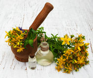 Tutsan flowers  and natural oil Stock Photography