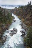 Tutshi河一致它` s多数困难的急流 免版税库存照片