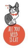 Tutta che abbiate bisogno di è carta di progettazione del gatto Fotografia Stock