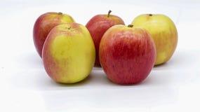 Tutta la mela pronta da mangiare Fotografia Stock
