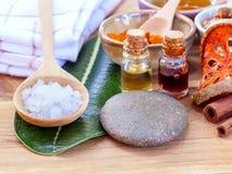 Tutti gli ingredienti tailandesi di cura di pelle Fotografie Stock