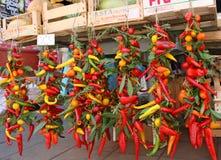 Tutti i colori di paprica Fotografie Stock