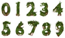 Tutti i numeri costruiti dalle viti e dalle foglie Immagini Stock