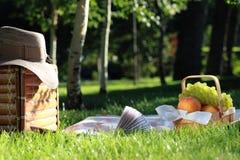 Tutti pronti per il picnic Fotografia Stock Libera da Diritti