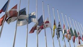 Tutto il Consiglio d'Europa del mezz'asta delle bandiere di Unione Europea