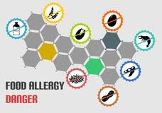 Tutto il tipo icone di allergia alimentare più comune Fotografie Stock Libere da Diritti