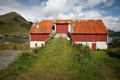 Tutto in Lofoten è rosso e verde immagine stock libera da diritti