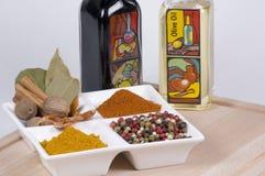 Tutto per un curry piacevole Fotografia Stock