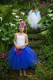 Tutu girls. Royalty Free Stock Images