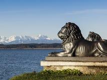 Tutzing lion head Stock Image