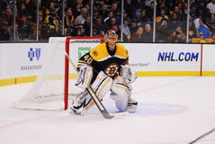 Tuukka Rask Boston Bruins Goalie Royalty Free Stock Image