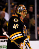 Tuukka Rask, Boston Bruins Royalty Free Stock Photography