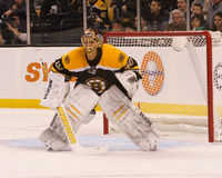 Tuukka Rask Boston Bruins Royalty Free Stock Image