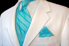 Tux branco Imagens de Stock