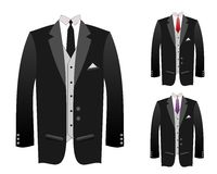 Tuxedo Royalty Free Stock Photo