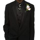 Tuxedo Royalty Free Stock Images