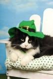 Tuxedo cat Leprechaun Royalty Free Stock Images