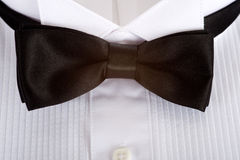 Tuxedo Shirt Background Royalty Free Stock Photography