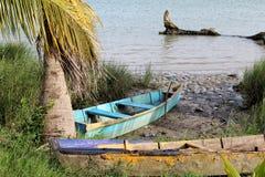 Tuxpan flod, Mexico royaltyfria foton