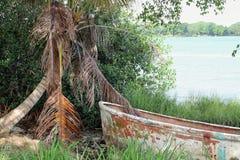 Tuxpan flod, Mexico fotografering för bildbyråer
