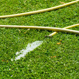 Tuyau de jardinage Photo libre de droits