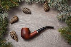 Tuyau de tabac de neige d'arbre de cône de pin macro images libres de droits