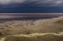 Tuz Golu, Środkowy Anatolia region, Turcja (Salt Lake) Obraz Stock