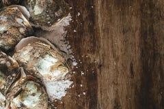Tuzin świeżych ostryg na drewnianej i dennej soli Odgórny widok Fotografia Stock