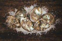Tuzin świeżych ostryg na drewnianej i dennej soli Odgórny widok Zdjęcie Royalty Free
