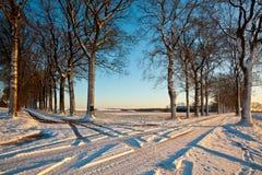 Tvärgator av snöig lanes royaltyfri fotografi