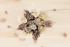 Tvärsnittet av olika packar av rå nudlar stänger sig upp på det mjuka beigea träbrädet, bästa sikt Royaltyfria Foton